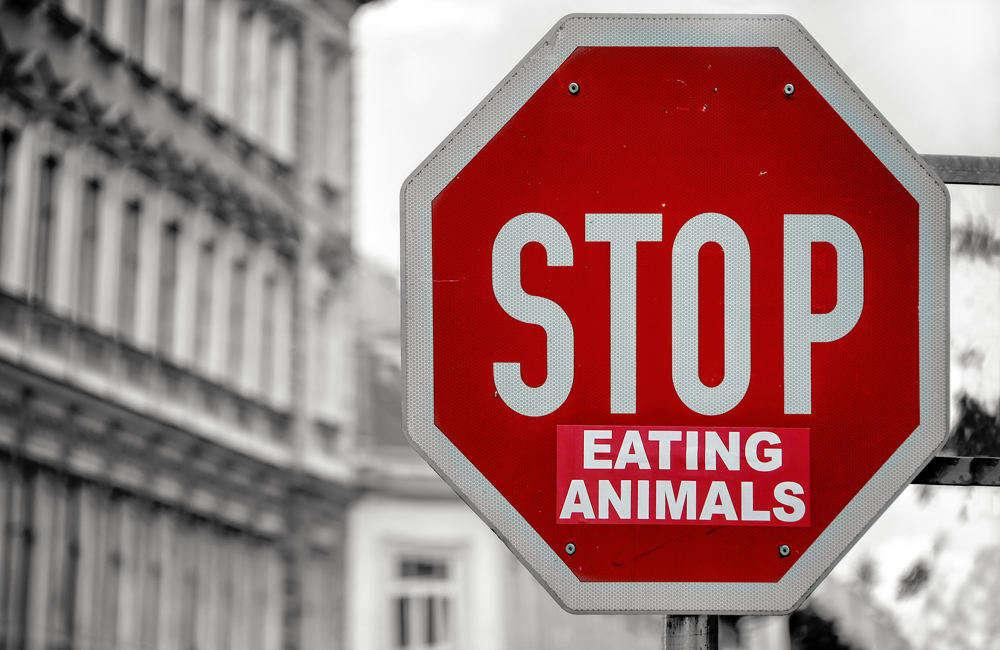 Razones por las que Soy Vegano